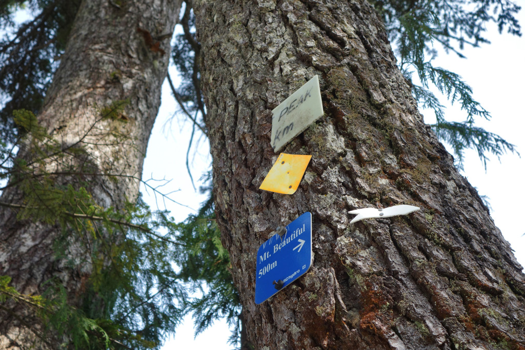 Last trail marker to the summit along eagle ridge
