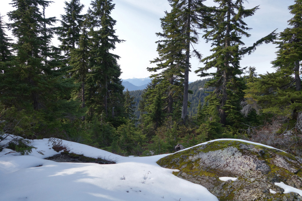 View from Hemlock Pass along eagle ridge trail