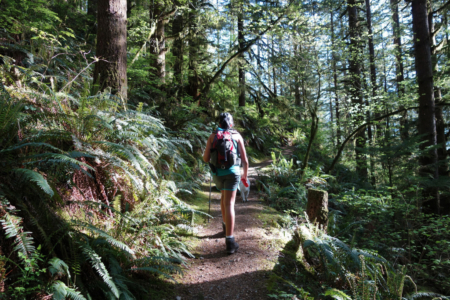 Walking Skeena Along the Evans Peak Trail