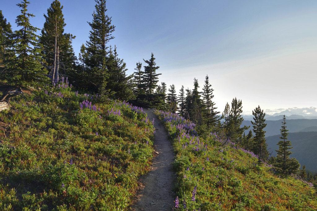 Heather Trail, Manning Park, Nicomen Lake