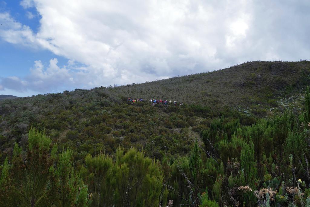 Marangu Route mt kilimanjaro