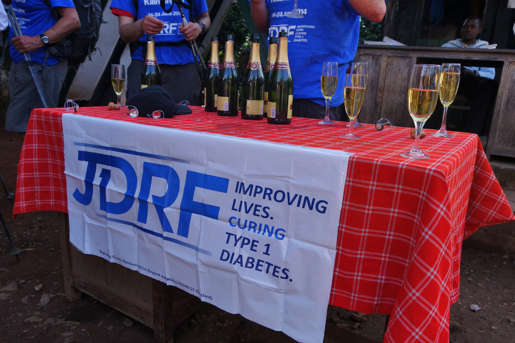 End of the Trek JDRF Marangu Route Mt. Kilimanjaro