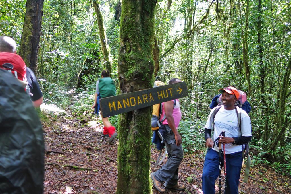 Marangu Route Mt Kilimanajro