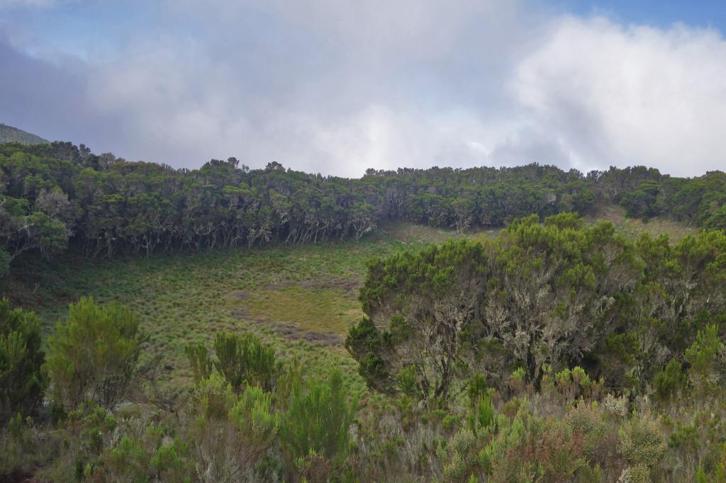 Maundi Crater marangu route mt kilimanjaro