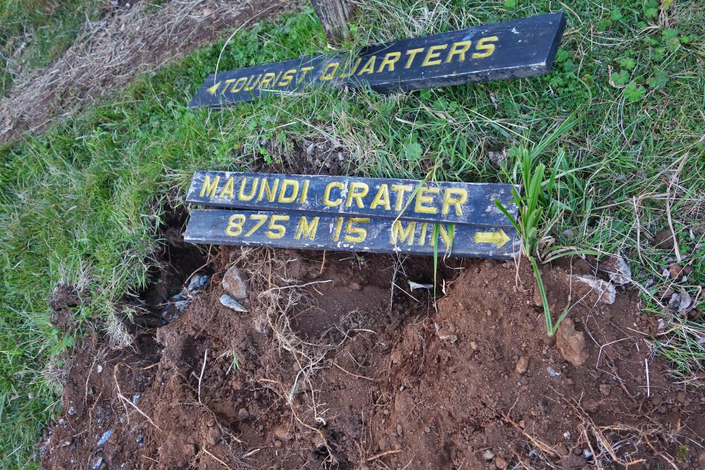marangu trail maundi crater mt kilimanjaro