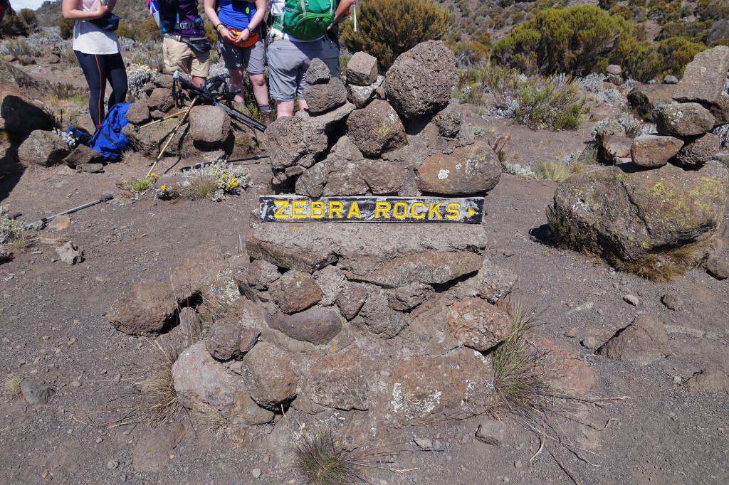 Zebra Rock marangu route mt kilimanjaro