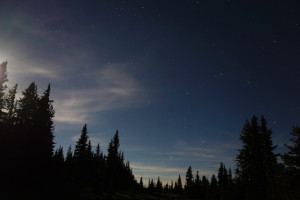 Manning Park night shots (2)
