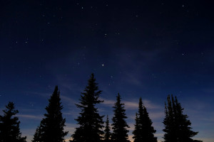 Manning Park night shots