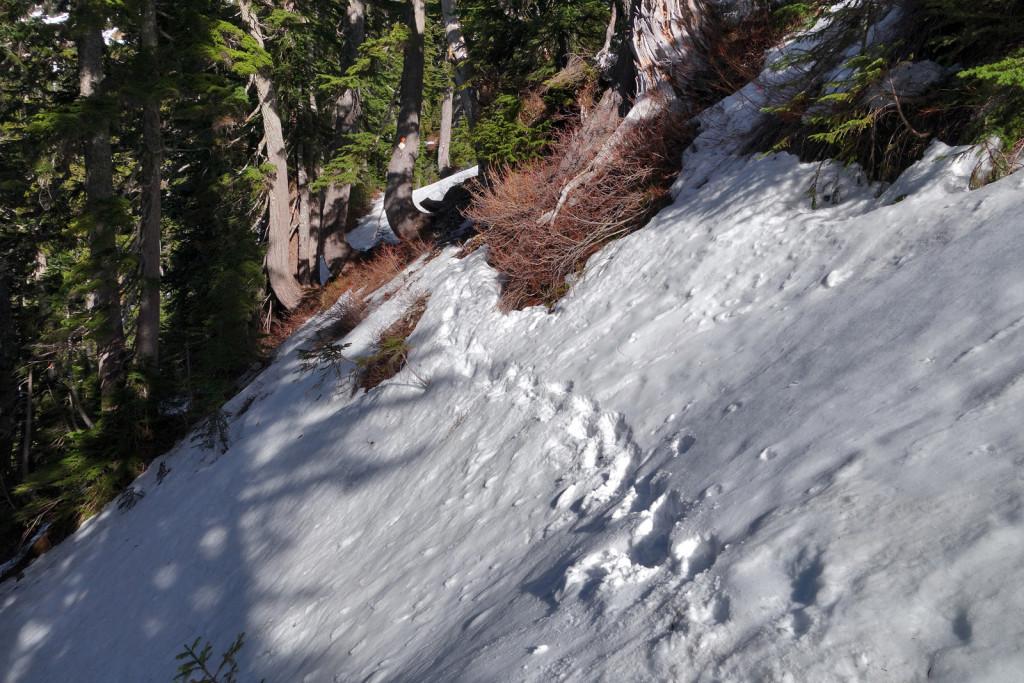 Howe Sound Crest Trail (3)