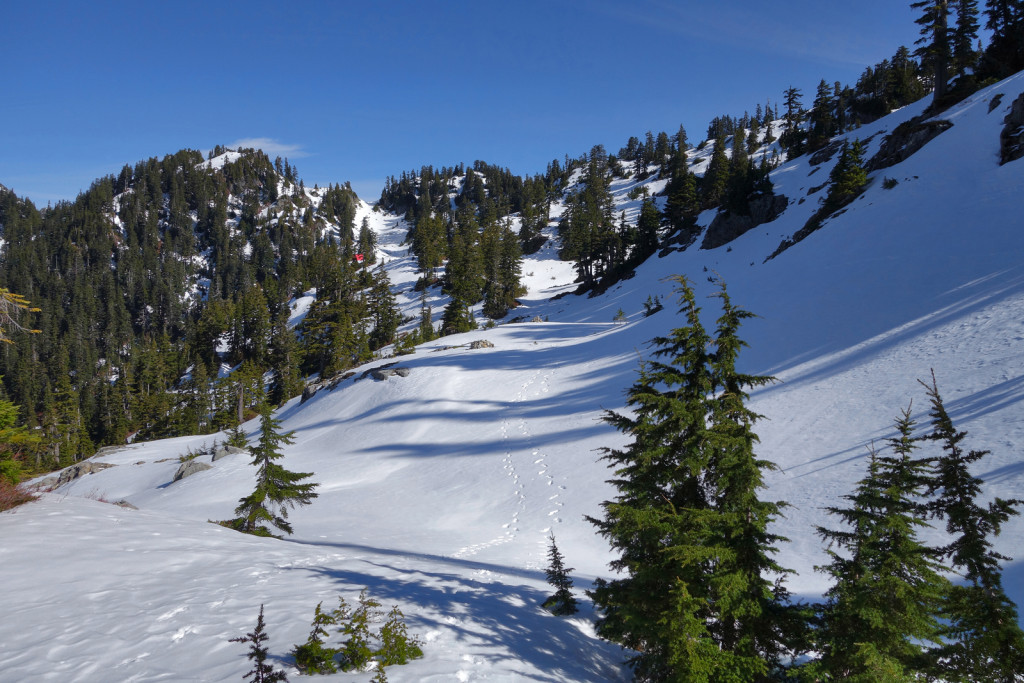 Looking back at Magnesia Meadows