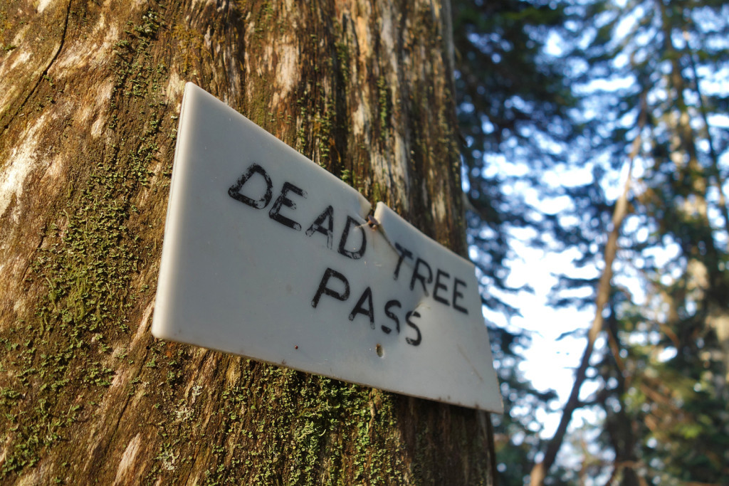 Dead Tree Pass, Eagle Ridge trail