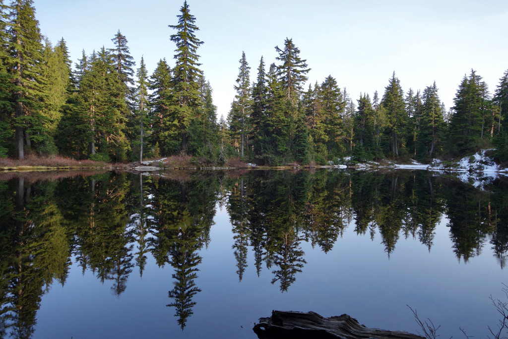 View of Lindsay Lake, joining up with the Lindsay Lake trail