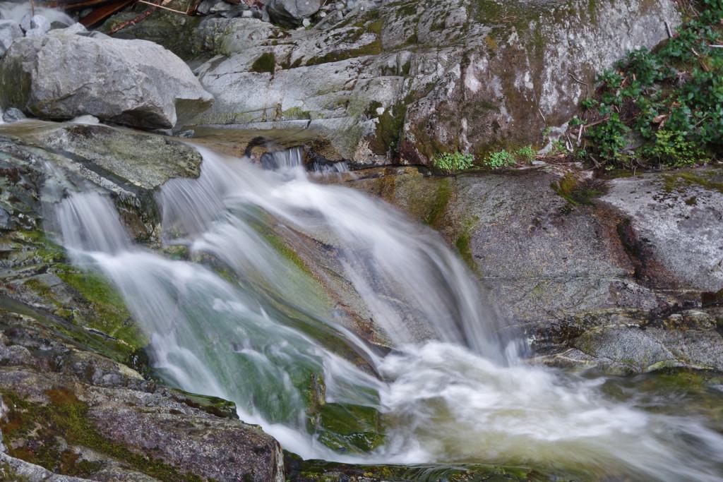 View of Swan Falls