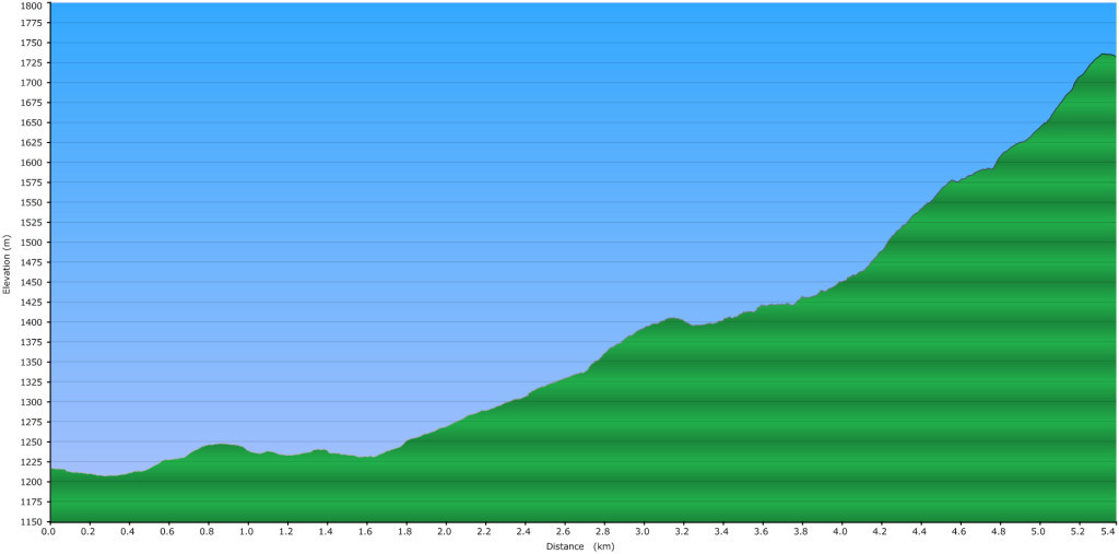 Elevation Profile of our Iago Peak Route