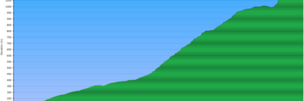 Elevation Profile of Evans Peak Trail