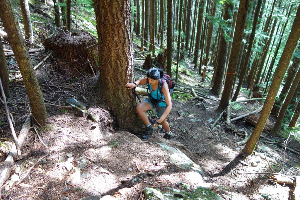 First Steep Section Along the Evans Peak Trail