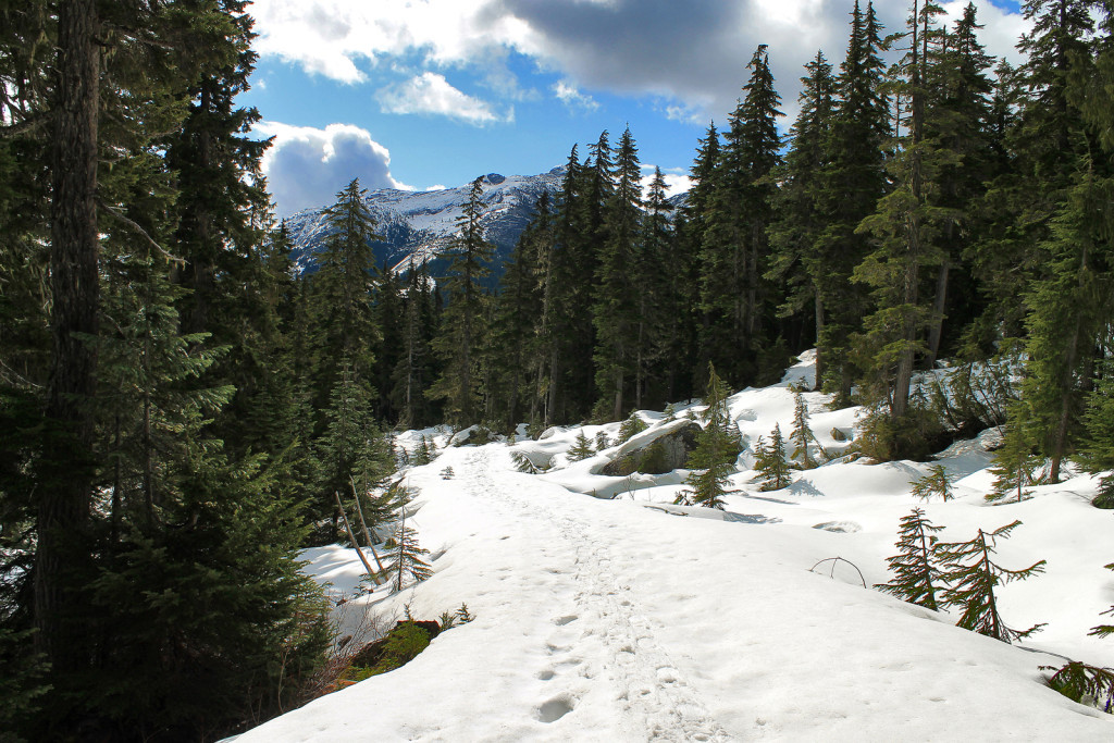 Snow Conditions on the road to Iago Peak