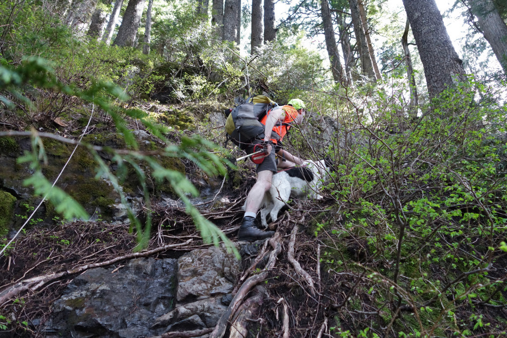 Skeena Scrambling up the First Steep Section on the Evans Peak Trail