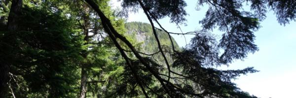 View of Evans Peak