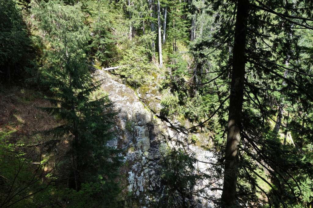 View of Stream Canyon