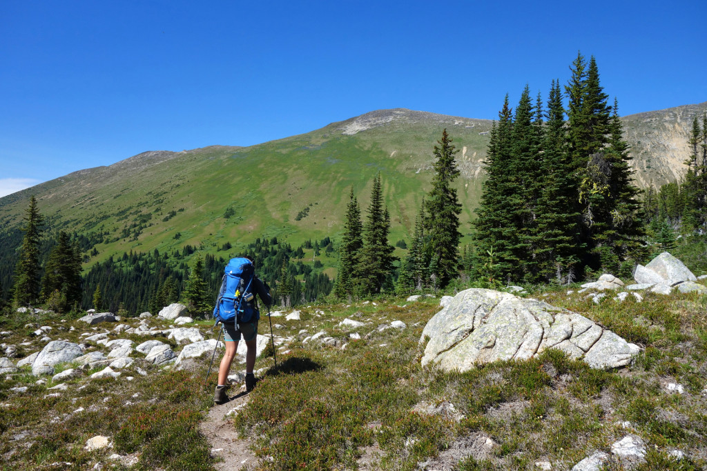 Kidney Lakes Trail Gott Peak Blowdown FSR Duffey HIghway