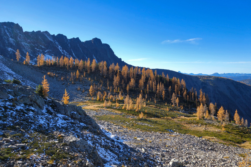 Ascending Frosty Mountain Golden Larches Manning Park BC