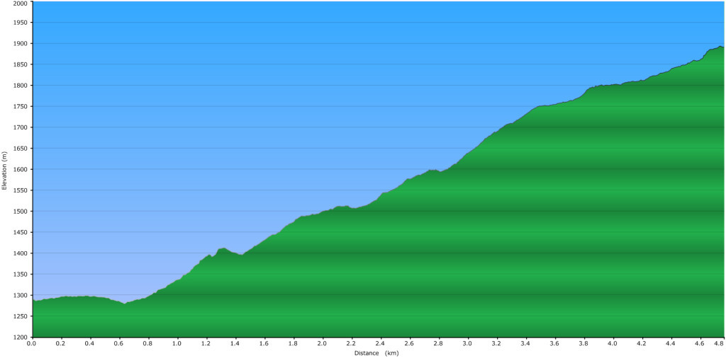 Illal Meadows – Elevation Profile
