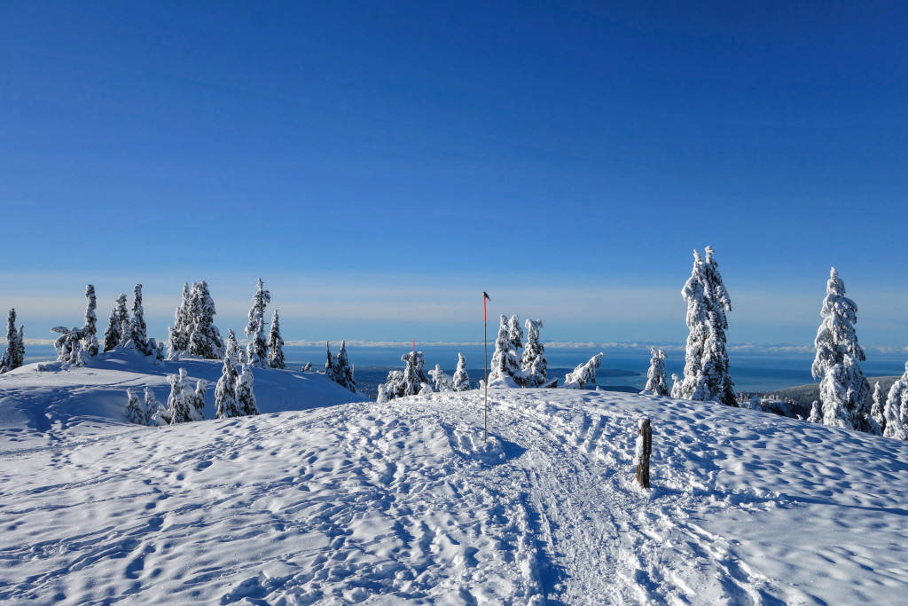 Brockton Point, Mount Seymour, Type 1 Diabetes, Adventures of a T1D