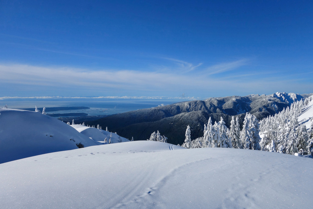 Tim Jones Peak, North Vancouver, North Shore Rescue, Mount Seymour