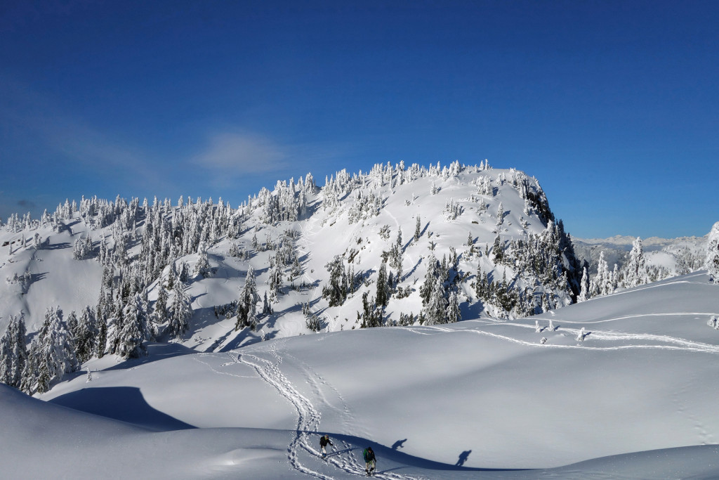 Tim Jones Peak, Mount Seymour Provincial Park, Adventures of a T1D, Type 1 Diabetes