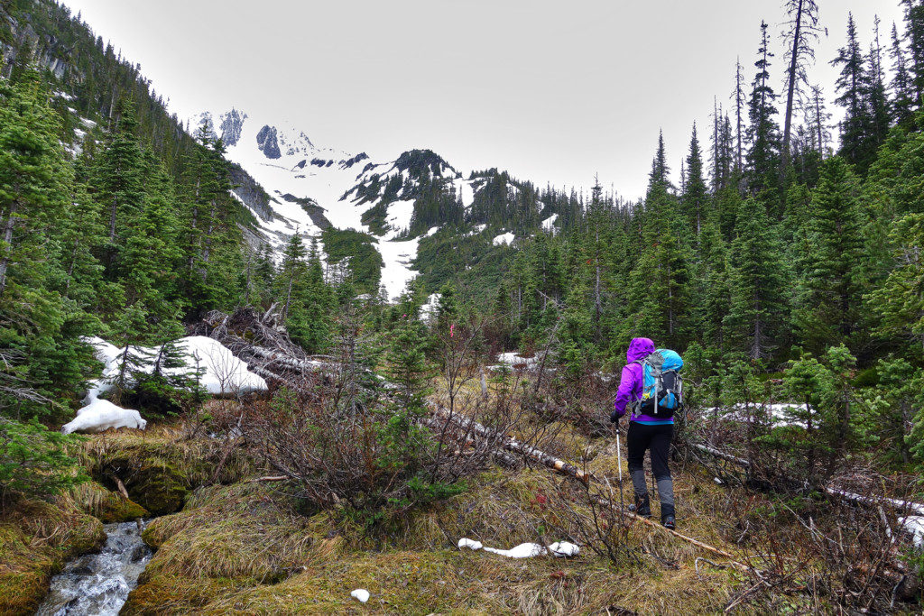 Viola Lake Trail