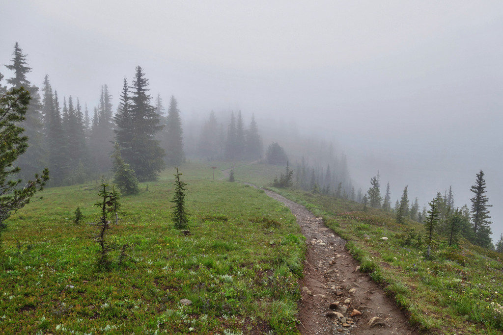 Views Along the Heather Trail, Manning Park