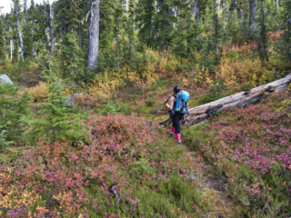 Blanca Lake Trail, Squamish