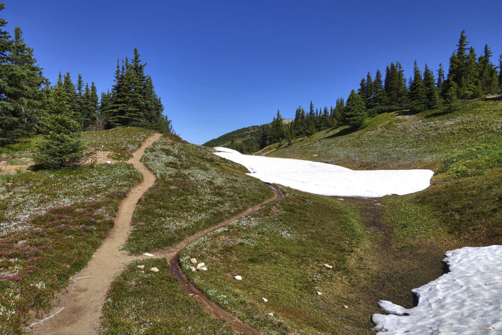 First and Only Trace of Snow Along the Trail